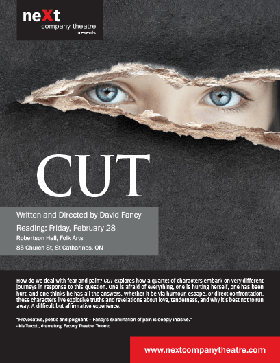 Cut, Play by David Fancy